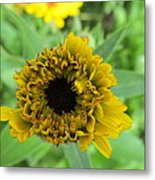 Yellow Bud Metal Print