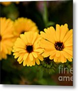 Yellow Chain Metal Print