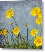 Yellow Flower Blossoms Metal Print