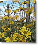 Yellow Flowers By The Roadside Metal Print