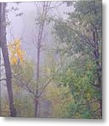 Yellow In The Fog Metal Print