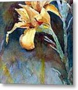 Yellow Iris Metal Print by Alan Smith
