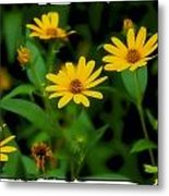 Yellow N Green Metal Print