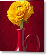 Yellow Ranunculus In Red Pitcher Metal Print