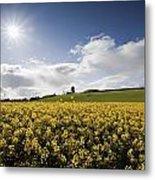 Yellow Rapeseed Field, Newgrange Metal Print
