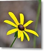 Yellow Star Metal Print