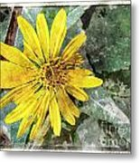 Yellow Wildflower Photoart Metal Print