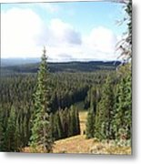 Yellowstone High Elevation Forest Metal Print