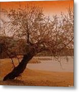 yesterday when I was young Metal Print