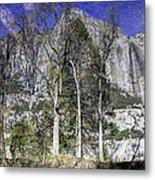 Yosemite Reflection Metal Print