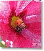 You And Me Are One Said The Bee Metal Print