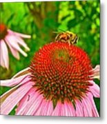 You Bee Long To Me Metal Print