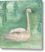 Young Swan Under Willow Tree Metal Print
