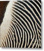 Zebra Caboose Metal Print
