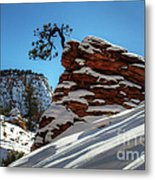 Zion National Park In Winter Metal Print