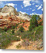 Zion National Park - A Picturesque Wonderland Metal Print by Christine Till
