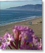 Zuma Beach Wildflower Metal Print