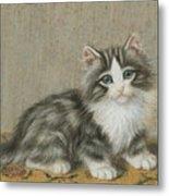 A Kitten On A Table Metal Print