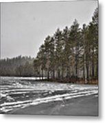 April Snow 3 Metal Print