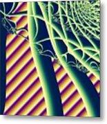 Fabaceae Metal Print