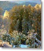 First Snow And Bosque Glow Metal Print