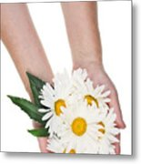 Giant Daisies For The Cosmetic  Industry Metal Print