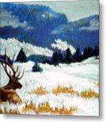 High Country Elk Metal Print