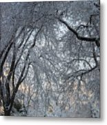 Ice Storm On The 6th II Metal Print