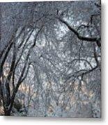 Ice Storm On The 6th II Metal Print