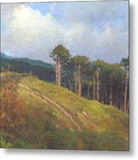 In The Crimean Mountains   Metal Print