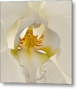 In The Heart Of The Orchid Metal Print