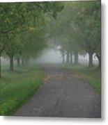 Knox Fog 6038 Metal Print
