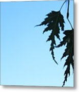Lacy Birch Leaf Metal Print