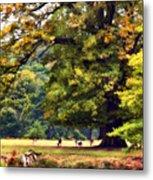 Landscape Under A Big Oak In Autumn Metal Print