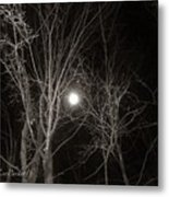 Lonely Night Metal Print