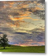 Lonley Tree Metal Print