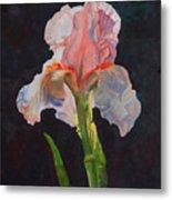 Majestic Iris Metal Print