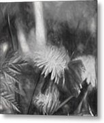 Monochromeartistic Panterly Artistic Painterly Gonepteryx Rhamni Common Brimstone Metal Print