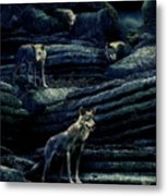 Moonlit Wolf Pack Metal Print