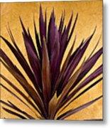 Purple Giant Dracaena Santa Fe Metal Print