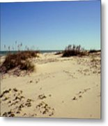 South Padre Island Dunes Metal Print