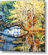 The Tree Across The Pond  Metal Print
