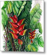 Tiger Claw .. Heliconia Metal Print
