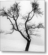 Tree In The Snow Metal Print