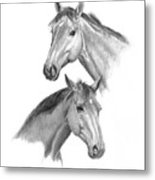 Two Horses Heads Metal Print