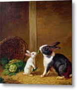 Two Rabbits Metal Print