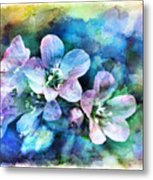 Wildflowers 5  -  Polemonium Reptans - Digital Paint 4 Metal Print