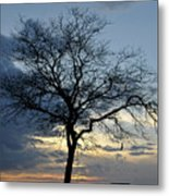 016 April Sunsets Metal Print