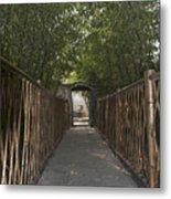 0171- Bamboo Walkway Metal Print