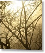 02 Foggy Sunday Sunrise Metal Print